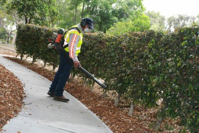 Weekly Landscape Maintenance